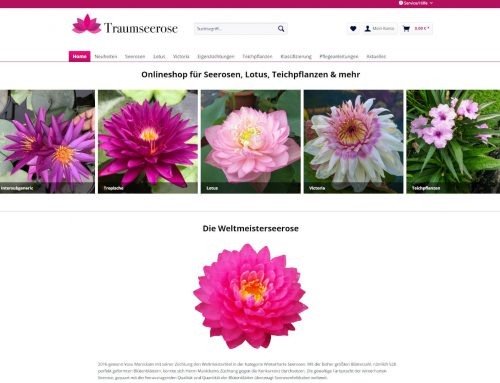 Traumseerose – Shopware Shop / Logo