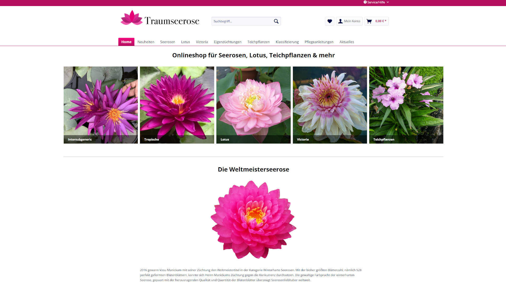 Screenshot: Traumseerose Webshop